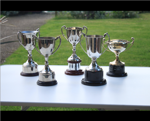 Annual Tournament Trophies 2015